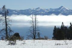 Lago invernale Yellowstone Fotografia Stock Libera da Diritti