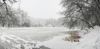 Lago in inverno Fotografie Stock