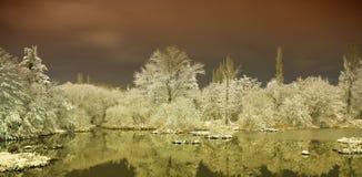 Lago in inverno Fotografia Stock