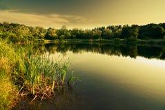 Lago in inverno (filtro caldo) Fotografie Stock