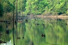 Lago Isaac Foto de archivo libre de regalías
