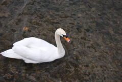 Lago Iseo Imagens de Stock Royalty Free