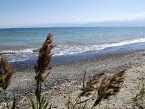 Lago Issyk-kul immagini stock
