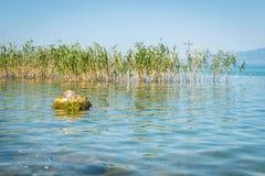 Lago Iznik em Turquia Foto de Stock