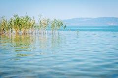Lago Iznik em Turquia Fotografia de Stock