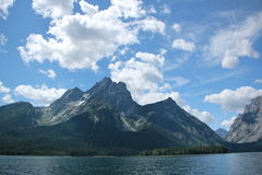 Lago Jackson e o Tetons grande Fotografia de Stock