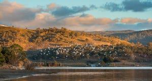 Lago Jindabyne in NSW Fotografia Stock Libera da Diritti