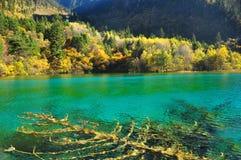 Lago Jiuzhaigou imagens de stock