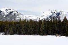 Lago Johnson Imagem de Stock Royalty Free
