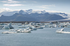 Lago Jokulsarlon (Islanda) Fotografia Stock Libera da Diritti