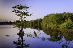 Lago jones Imagem de Stock