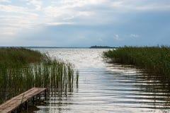 Lago juncoso summer imagen de archivo