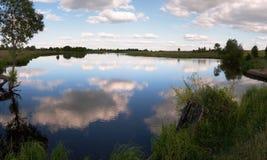 Lago juncoso summer foto de archivo libre de regalías