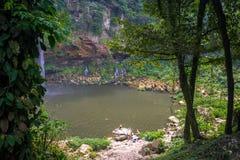 Lago jungle Fotografia Stock Libera da Diritti