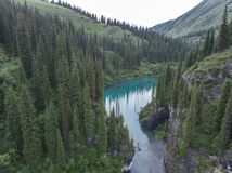 Lago Kaindy em Cazaquistão conhecido igualmente como o lago tree de vidoeiro ou a floresta subaquática imagem de stock royalty free
