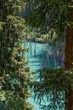 Lago Kaindy a través de abetos Imagen de archivo
