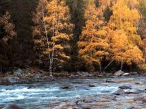 Lago Kanas in autunno Fotografie Stock Libere da Diritti