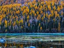 Lago Kanas en otoño foto de archivo libre de regalías