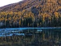 Lago Kanas en otoño imágenes de archivo libres de regalías