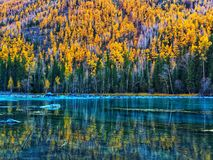 Lago Kanas en otoño imagen de archivo libre de regalías