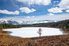 Lago Kodelyukyol Altai Fotografie Stock Libere da Diritti