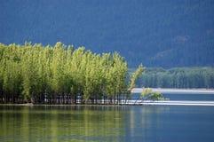 Lago Kootenay, Columbia Britannica Immagini Stock