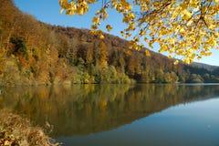 Lago lac de Lucelle Lucelle con la riflessione della foresta in autunno Fotografia Stock Libera da Diritti