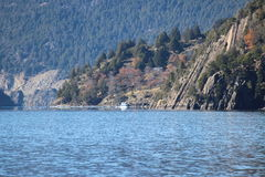 Lago Lacar Immagine Stock