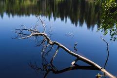 Lago ladoga Fotografía de archivo