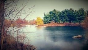 Lago laggiù Fotografie Stock Libere da Diritti