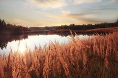 Lago landscape Fotografía de archivo libre de regalías