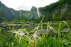 Lago landscape, foresta, cielo Fotografia Stock