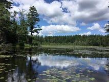 Lago Laurall, New Hampshire, reflexões do verão fotografia de stock royalty free
