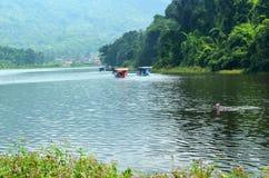 Lago Lengkong Fotografía de archivo libre de regalías