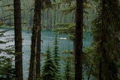 Lago lightning del ambiente del verde de Canadá del desierto fotografía de archivo libre de regalías