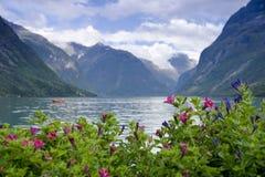 Lago Lovatnet fotografia stock