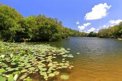Lago lover dell'università di xiamen Immagini Stock Libere da Diritti