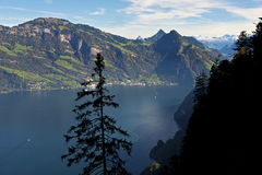 Lago Lucerna Immagine Stock Libera da Diritti
