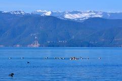 Lago Lugu immagini stock libere da diritti