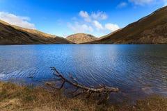 Lago Lyndon, alpi del sud, Nuova Zelanda immagine stock