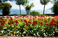 Lago Maggiore, lago italiano imagens de stock royalty free