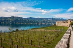 Lago Maggiore. View over Lake Maggiore with grapawines from Rocca di Angera, Italy royalty free stock image