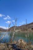 Lago majestoso da montanha em Romênia Vista vertical com gre da floresta Fotos de Stock