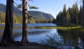 Lago Mamie en madrugada Imágenes de archivo libres de regalías