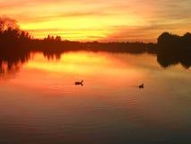 Lago mango Fotos de archivo