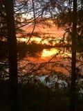 Lago mango Imagen de archivo libre de regalías