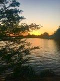 Lago mango Fotos de archivo libres de regalías