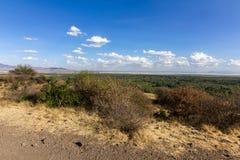 Lago Manyara Immagini Stock