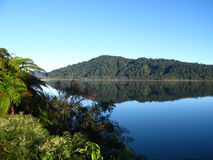 Lago Mapourika, Nueva Zelandia Foto de archivo libre de regalías