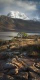 Lago Maree Foto de archivo libre de regalías
